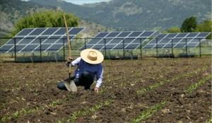Energia solar rural: por que investir?